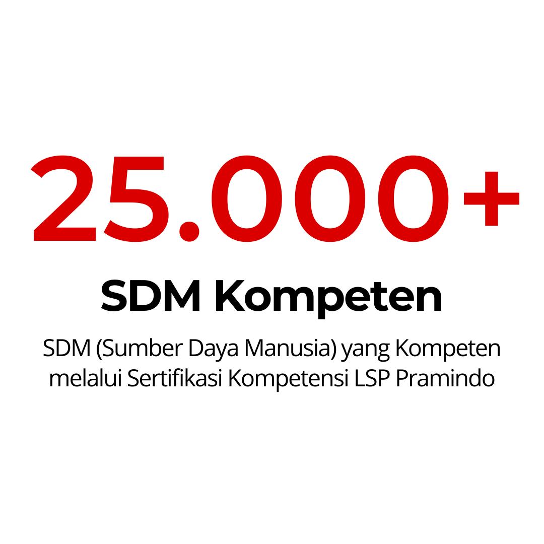 25000 SDM