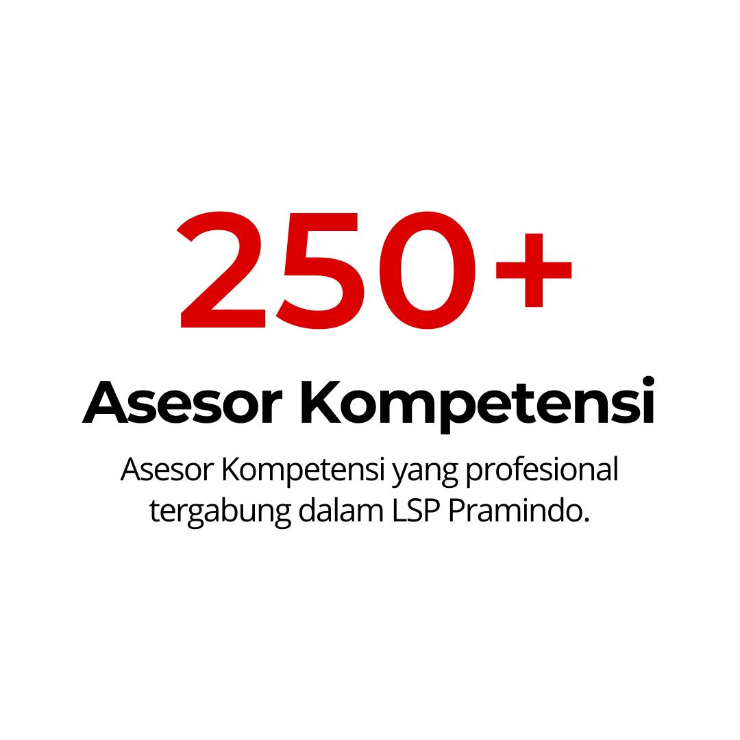 250 ASESOR